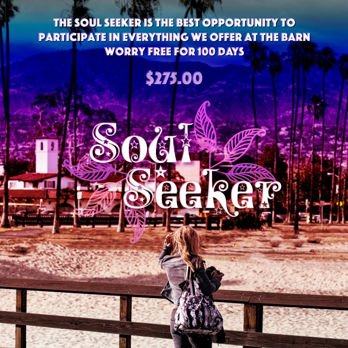 The Body Art Barn - Soul Seeker