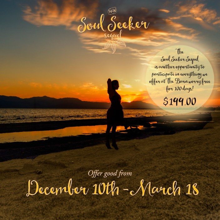 Soul Seeker Special